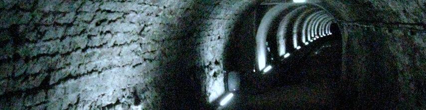 Plumbing horror stories for Halloween featured image