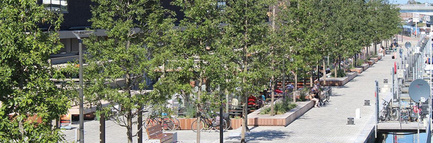 The City growing greener with Wavin's TreeTanks featured image